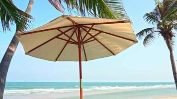 Umbrella and Chair Around Sea Beach with Palm Tree video