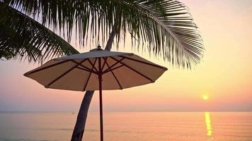 Umbrella and Palm Tree at Sunset on Sea Ocean video