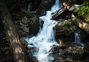 Stream in a forest photo