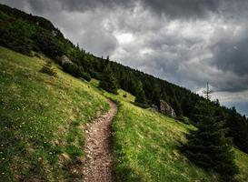 Mountain trail up the steep meadow photo
