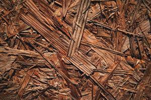 fondo de virutas de madera foto