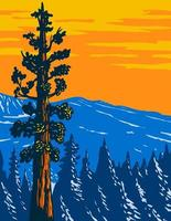 el árbol boole secuoya gigante en converse cuenca arboleda de secuoya gigante monumento nacional en sierra nevada condado de fresno california usa wpa poster art vector