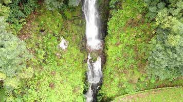 cachoeira na ilha de são miguel, açores. luxuriante vegetação verde video