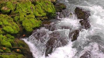 cascade et roches vertes moussues
