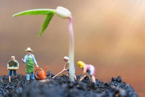 Jardineros en miniatura cuidando el cultivo de brotes en un campo, concepto de medio ambiente foto