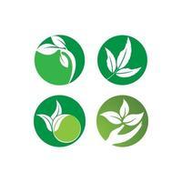 Green leaf logo set vector