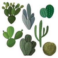 A set of cacti. Vector image in a flat style. A colorful collection of indoor cacti.