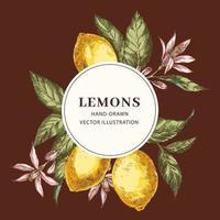 plantilla de marco de círculo dibujado a mano de limón vector