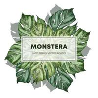 plantilla de cartel dibujado a mano de diseño monstera vector