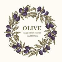 Wreath with olive branches vector