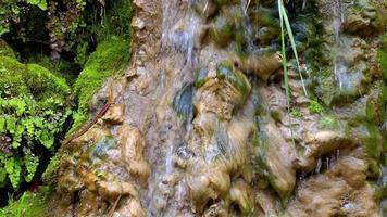 uma cachoeira na rocha musgosa