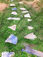 Stone walkway winding in the garden photo