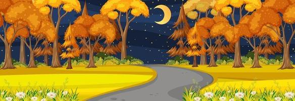 Autumn season with road through the park at night time horizontal scene vector