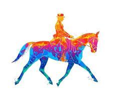 deporte ecuestre abstracto de salpicaduras de acuarelas. jinete en uniforme a caballo. doma sobre un fondo blanco. ilustración vectorial de pinturas vector