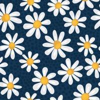 patrón de primavera sin costuras con manzanillas simples. vector