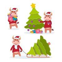 toro lleva regalos, arrastra en un trineo y decora un árbol de Navidad. año del buey. Conjunto de vacas felices. año nuevo y feliz navidad ilustración vectorial. símbolo del zodíaco chino del año 2021. vector
