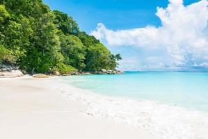 Beautiful tropical beach background photo