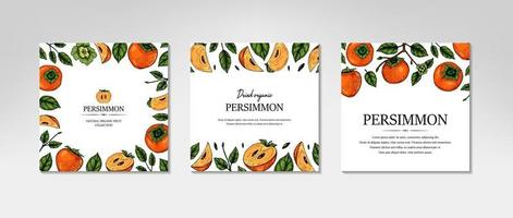 Set of hand drawn colorful persimmon design. Vector illustration in colored sketch style.
