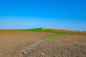 campo preparado para sembrar con cielo azul foto