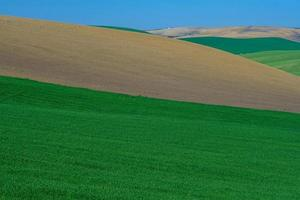 coloridas colinas rurales foto