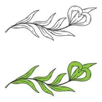 Floral element for the logo. vector