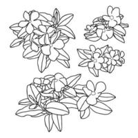Composition of flowers, hand-drawn vector illustration.