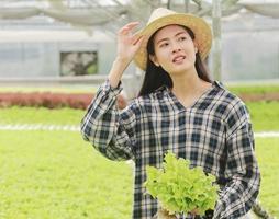 mujer sosteniendo lechuga en invernadero foto