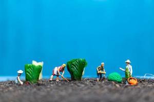Jardineros en miniatura cosechando hortalizas, concepto agrícola foto