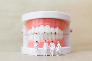 Miniature dentists and nurses observing and discussing about human teeth with gums and enamel model on a wooden background