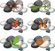 Conjunto de diferentes insectos aislado sobre fondo blanco. vector