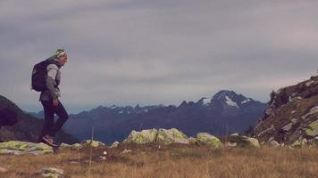 caminar por la montaña con un perro pastor bergamasco video