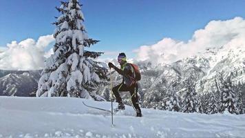 Ein Skibergsteiger klettert mit Robbenkins in Neuschnee video