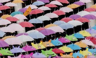 variedad completa de hermosas sombrillas de colores foto