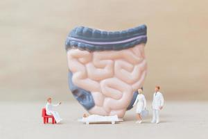 Miniature doctors and nurses observing and discussing the human intestine, science and medical concept