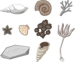 Set of sea object isolated vector