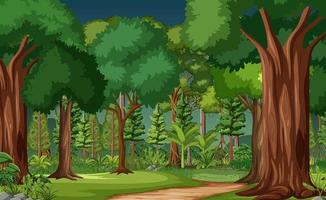 Forest scene with many trees vector