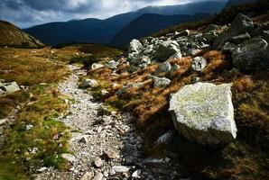 Walking path on a mountain