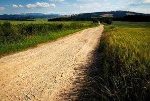 Sandy path through picturesque countryside photo
