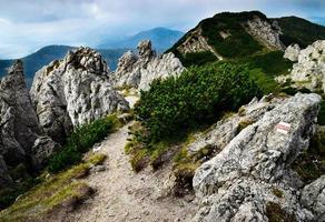 Rocky hiking trail path