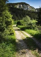 Path to the sunny foothills of the valley photo