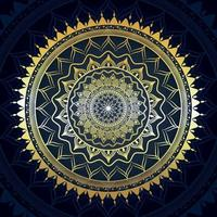 Creative mandala background pattern vector