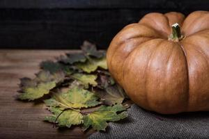 Pumpkin lying on a wooden table photo
