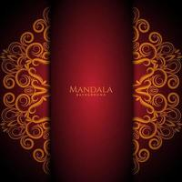 Beautiful mandala design modern  decorative luxury background vector