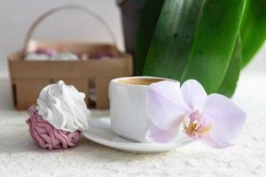 Marshmallows handmade white and pink with coffee photo
