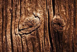Detalle de una vieja placa de madera marrón desgastada foto