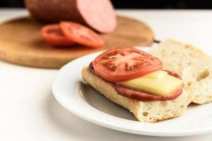 Hot sandwiches with tomatoes photo