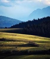 Evening sun on mountain meadows photo