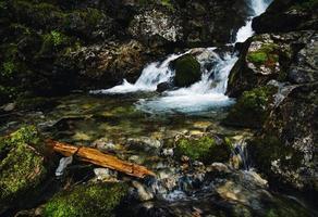 Detail of a wild mountain stream photo