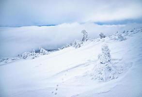 Mountain snow and frozen landscape photo