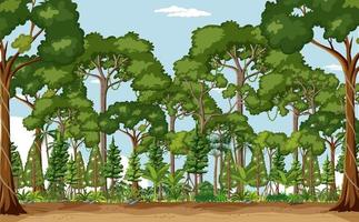 Forest scene with many trees at day time vector